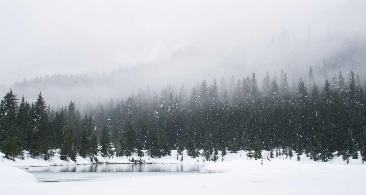 winter-sips-1180